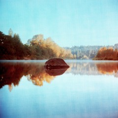 Still Morning (Daniel Polidori) Tags: reflection tlr film oregon lomo xpro crossprocessed velvia lubitel fujifilm analogue russiancameras clackamasriver vintagecameras