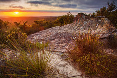 The Rising Over The Mountain || MT HAY || BLUE MOUNTAINS (rhyspope) Tags: australia aussie nsw new south wales mt mount hay leura blue mountains sunrise sunset nature color colour rhys pope rhyspope canon 5d mkii rocks grass shrub bush tree mountain valley sky cloud