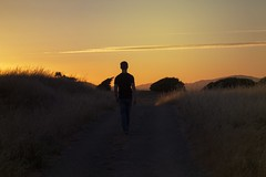 Alex (lordgogurt) Tags: people person figure being body life man male guy dude boy walk walking stand standing open nature outdoor outdoors trail path road field meadow dusk evening sunset colors sky light lighting