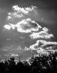 Clouds on a Summer Day, Middletown, New York (nsandin88) Tags: bandw nikon newyork sigma ny darksky blackwhite exploration blackandwhite bw sky d7200 clouds