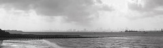 Mumbai - India (Corn van de Laar) Tags: india mumbai arabian sea skyline elephant island blackandwhite outdoor bw