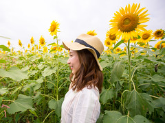 Young woman looking at the same direction with sunflowers (Apricot Cafe) Tags: asianethnicity canonef1635mmf28liiusm japan kanagawa enjoy happiness nature oneperson outdoor refresh strawhat summer sunflower traveldestinations vacation walking weekendactivities woman youngadult zamashi kanagawaken jp img647023