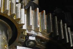 DSC09852 (qwertzXesc) Tags: gear flickrfriday gearbox