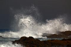 splash... (tdwrsa) Tags: hibberdene tamronsp150600mmf563divcusda011 canoneos70d splash