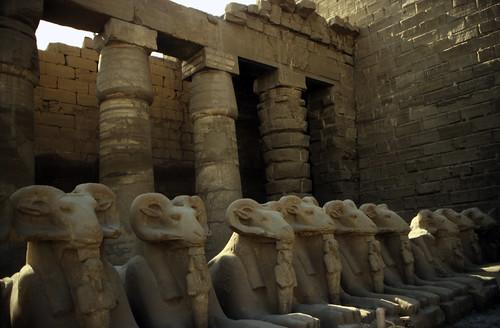 "Ägypten 1999 (328) Karnak-Tempel: Widdersphinx im Hof von Tempel des Amun-Re • <a style=""font-size:0.8em;"" href=""http://www.flickr.com/photos/69570948@N04/29077816626/"" target=""_blank"">View on Flickr</a>"