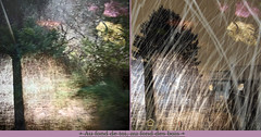 Deep Down Inside, Deep in the Woods (andrefromont/fernandomort) Tags: andrfromont andrefromontfernandomort fernandomort diptych diptyque meditation mditation vitraille vitrail