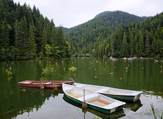 Lacul Rou lake, Hmau Mare Mountains (fotobardamu) Tags: lake mountains landscape romania transylvania hasmasu outdoor boat forest tree