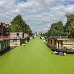 Groene grachten in Groningen (koos.dewit) Tags: 2016 groningen holland koosdewit koosdewitnl thenetherlands canal cityscape clouds green water iphone6