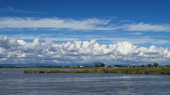(LILI 296 ...) Tags: canonpowershotg7x t paysage extrieur hrault tang eau nuage ciel