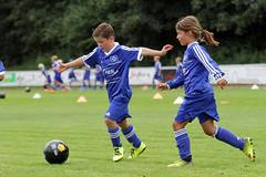 Feriencamp Pln 30.08.16 - c (2) (HSV-Fuballschule) Tags: hsv fussballschule feriencamp pln vom 2908 bis 02092016