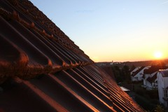 Sonnenaufgang / sunrise (T.Flat ) Tags: sunrise sunrising summer sun sommer sonne sonnenaufgang sonnenstimmung mood licht morgenlicht morgen morning morningglory germany deutschland frankfurt frankfurtammain rheinmaingebiet rhinemainarea matin soleil solaire solare solar sol leverdusoleil salidadelsol