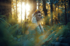 The Quest (Kindra Nikole) Tags: legend forest forested glade glen grove sunlight sun sunbeams maiden medieval white hair floral crown ferns fern