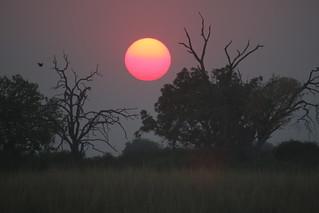 Namibia Dangerous Game Safari - Caprivi Strip 80