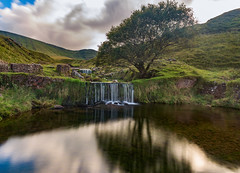 Reflective Tree (absynth100) Tags: reflections water waterfall river tree grass mountain view calm wales uk breconbeacons wall road landscape