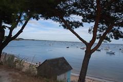 DSC_0341 (guyfogwill) Tags: boats guyfogwill france beachhuts brittany beach guy bretagne 2016 damgan fra