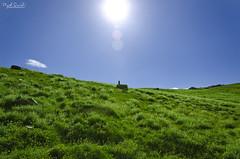 Serenity (Piyush.Saxenaa) Tags: blue green sky mountains mountain bluesky clouds outdoor sun sunshine spiti spitivalley chandrataal himachal batal nikon d5100 nikond5100 18105 18105mm piyush piyushsaxena psphotography piyushsaxenaa saxena nature