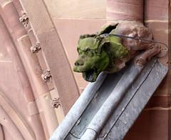 Strasbourg-2016-02-13-256 (Sambaphi) Tags: strasbourg alsace france cathdrale cathedral notredame gargouille gargoyle