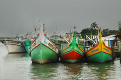 Three Fat Ladies of the Sea and Jenifar! (Anoop Negi) Tags: red india color green yellow boats island photography boat photo fishing community fishermen harbour kerala best wellington theme shipyard cochin anoop trawler ernakulam negi trawlers willingdon ezee123