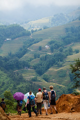 IMG_2950 (rovinglight) Tags: misty rice north foggy charm vietnam fields sapa laocai terraced trekkinglaocaivietnam