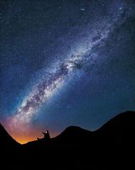 california park longexposure nightphotography light red... (Photo: Sairam Sundaresan on Flickr)