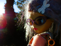 Dizzy's sunny shot