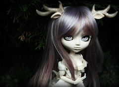 Mnmosyne (Konato) Tags: little pullip crow custo miette mnmosyne dashka crazia konato