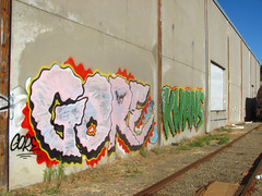 Al Gore Kwans (Slum Dawg Millionaire) Tags: graffiti gore stc sacramento kwans gtl