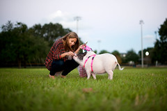 DSC_3076 (Michael Mendonca) Tags: park sunset dog pet baby white playing halloween grass contrast photoshop pig orlando nikon october florida central sigma running depthoffield software backdrop nik louie sniff leash nikkor dogpark ucf baldwinpark i4 centralflorida bluejacket universityofcentralflorida petpig 70200mmf28 50mmf14g cs5 d700 photographyclubucf