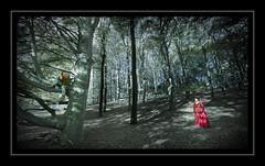 Once Upon A Tree (Fotogravirus) Tags: tree fantasy knight veluwe posbank prinses liesbaas fotogravirus