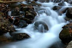 Jordan Pond Stream (StephanFG) Tags: maine streams acadianationalpark