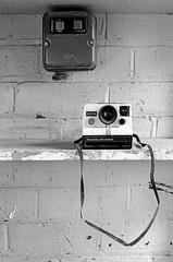 Polaroid Land Camera 1000SE (Pictures from the Ghost Garden) Tags: urban blackandwhite bw film monochrome 35mm polaroid mono blackwhite olympus om2 blancetnoir weissundschwarz