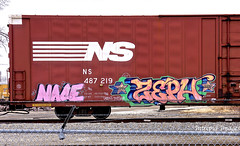 nace   -   zeph (INTREPID IMAGES) Tags: street railroad streetart color art train bench graffiti fan fry zeph paint ns steel painted graf stock tracks rail railway trains tags images railcar zephyr intrepid writer boxcar graff railfan freight rolling nace gr8 paintedtrains fr8 railbox benching railroadgraffiti paintedsteel railer graffitidinosaur intrepidimages 487219