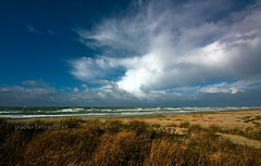 Calambrone winter beach (paolo brunetti) Tags: winter sea sky cloud storm beach rain mare wind cloudy pisa inverno livorno spiaggia vento tirrenia calambrone