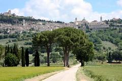 Assisi (Luiz Felipe Castro) Tags: italy europa europe italia photographer assisi assis fotografo luizfelipecastro luizfelipedasilvadecastro