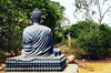 "Buddha in the bush - Part 2  Somewhere around Dhauligiri.   ✨ ✨  #travel #odisha #odishadiaries #frommywindowseat #peace #peaceandlove #light #guide #buddha #nature #instadaily #random #photo #follow #travelingram #followme #instafollow <a style=""margin-left:10px; font-size:0.8em;"" href=""http://www.flickr.com/photos/133906807@N02/28522386912/"" target=""_blank"">@flickr</a>"