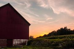 || i  want  someone  to  know  me || (2lu22lu2) Tags: sunset farm sunsetfar redbarn barn sunsetbarn pinksky cornfields country boltonheritagefarm boltonfarm boltonct