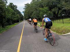 GOPR8370 (EddyG9) Tags: mstour150 ms tour training ride covington abita outdoor cycling cyclists bicycle louisiana 2016 paceline gopro hero3 teamsmiley rookie riders