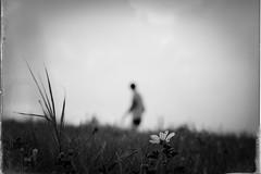 man outdoors ( Mikica Kosanovi ) Tags: silhouette a6000 sigma60mm art innamoramento noiretblanc dof