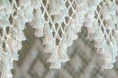 Linda's Lovely Lace HMM (TuthFaree) Tags: elements lace macro macromonday hmm white dof thefirstletterofmyname