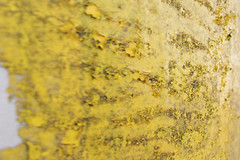 Acceleration to oblivion (Djaron van Beek) Tags: closeup abstract yellow traces texture blisters angle light dof blurred focus depthoffield bokeh strangefocus weird chaotic monochrome weathered curve wild rough dirt notthatmuchprocessed notmaintained partofadvertisingcolumn unusedspaceforadvertisements imaginative reflectinglight impressionofwatersurface composition elaborate detailofthesocalledpepperbox pepperbox transformerhouse steel amsterdam exteriorcanberentedforads madein1950s urban city suggestionofstrokes perspective strange corrosion paint eclectic beautyofdecay difficultimage outdoor partofthetownscape associative subtletransitions minimal art experiment metal rustiscomingthrough primer yellowpaintisprimer abstractartawards djaron djaronvanbeek