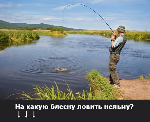 ловится ли рыба в жару