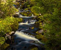 Snowgrass Creek (1riverat) Tags: water waterfall 1riverat matthewreichel goatrocks snowgrass creek le stream zigzag