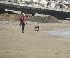 3452 Walking her dog (Andy - Daft as a brush - don't ask!) Tags: 20160816 beach ddd dog dogwalker kent littlestoneonsea sand sss www