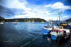 Portree (ninaflynnphotography) Tags: portree scotland isleofskye skye travel photography ninaflynnphotography ninaflynn2016 boats waterscape water cloud canoneos5dmarkiii canonef1635mmf28liiusm landscape seaview amazingview bluesky