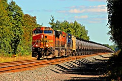 Cans west (cheliman) Tags: bnsf locomotives train csx railroading fairview pa nwpa ge ac44cw c449w