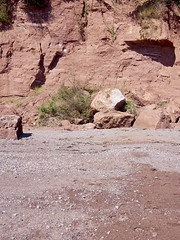 Cliffs, Ness Beach (Martin McDonald) Tags: rocks cliff weeds beach redrock theness sheldon teignmouth devon