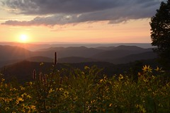 Sunset on the Skyline Drive, Shenandoah National Park, Virginia (jkrieger84) Tags: nikon d600 landscape nature sunset shenandoah flowers blue sky tree mountains skylinedrive shenandoahnationalpark