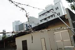 Yokosuka 160925 #1 (Taro Jimkisbea) Tags: yokosuka barbedwire street ricoh grd4 grdigitaliv