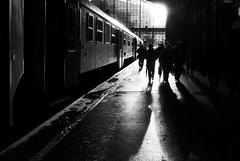 Budapest (SCL/BUD) Tags: train reflections tren nikon europa europe hungary budapest streetphotography shades trainstation nikkor sombras f4 easterneurope reflejos magyarorszag hungra 1635 railwayterminal europadeleste estacindetrenes documentaryphotography nyugatiplyaudvar fotografadocumental d7000 fotografacallejera 1635f4 nikond7000 nikon1635f4 nikkor1635f4 westernrailwayterminal