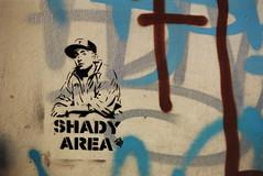 Slim Shady